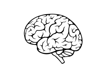 human brain icon. side view. isolated vector mind, psychology and medical neurology sign Vettoriali