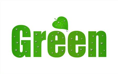 Ga groen blad met een witte achtergrond.  Stock Illustratie