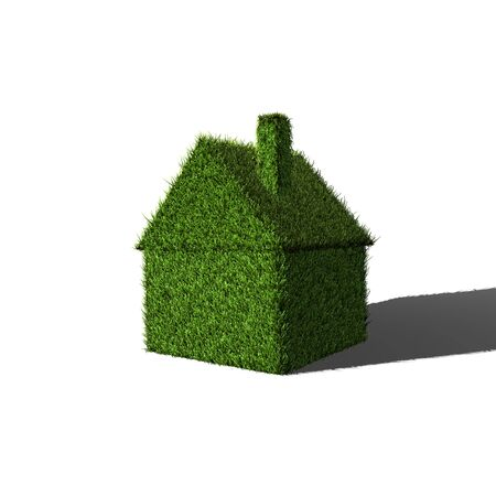 carbon footprint: Image of a 3D house made of green grass.