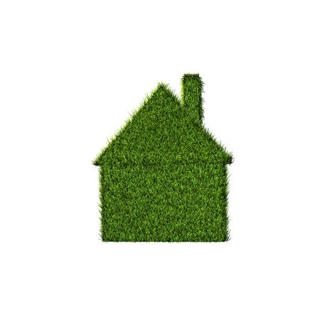 carbon footprint: Front view of a house made of grass.