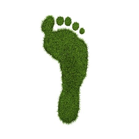 Green grass footprint on a white background. photo