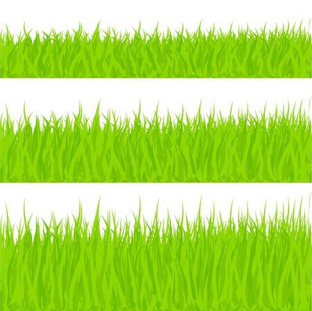 Gras vectorillustratie