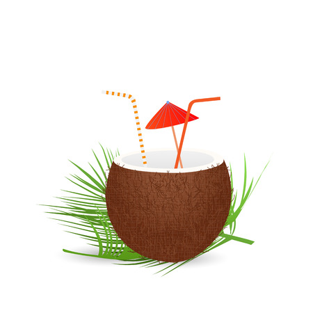 coconut drink: Illustration of a coconut drink isolated on a white background.
