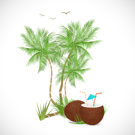 Illustration of a coconut drink and palm trees isolated on a white background.