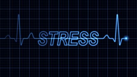 doctor stress: Blue electrocardiogram creating stress word. Part of a series.