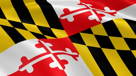 Marylander flag in the wind. Part of a series.