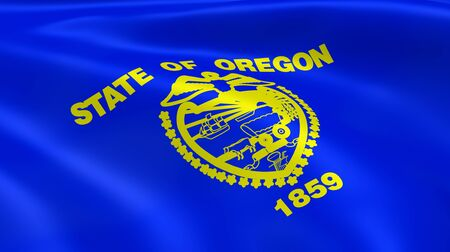 state of oregon: Oregonian flag in the wind. Part of a series.