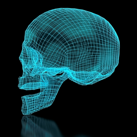 3D mesh skull in blue color  Side view  Part of a series  photo