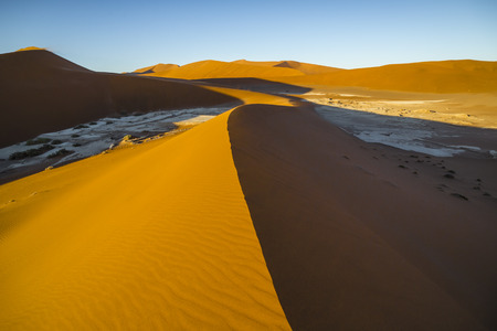 View of red dunes in  in the Namib Desert, in Sossusvlei, in the Namib-Naukluft National Park of Namibia