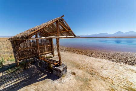 View of Laguna Lagoon Cejar in the Atacama Desert, Antofagasta, Chile
