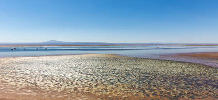 Beautiful landscape of the Chaxa Lagoon Laguna with reflection of surroundings and blue sky in Salar of Atacama, Chile Stock Photo