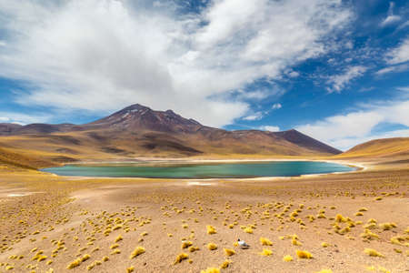 Miniques Lagoon on the altiplano in the Atacama Desert in the Antofagasta region of northern Chile, South America