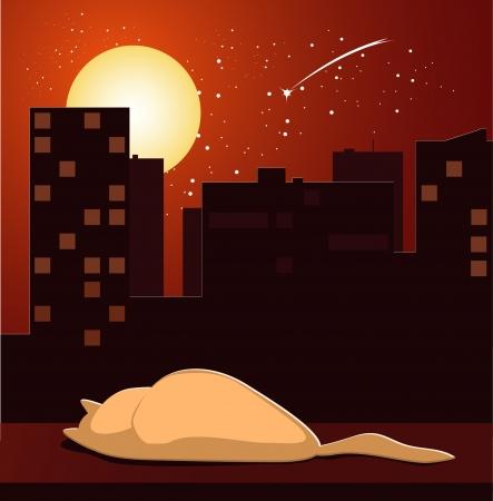 windowsill: cat sleeping on windowsill Illustration