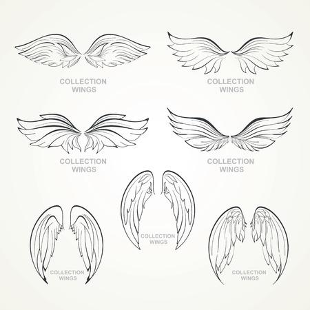 Flügel Sammlung Reihe von Flügeln Standard-Bild - 29721201