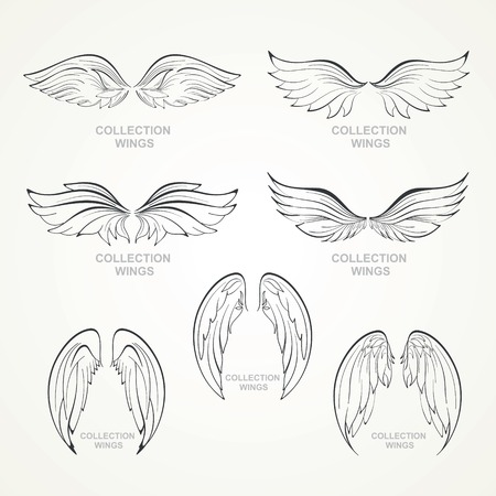 wings collection  set of wings Stock Vector - 29721201