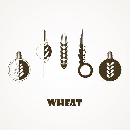 wheat field: Icons stylized wheat  ears