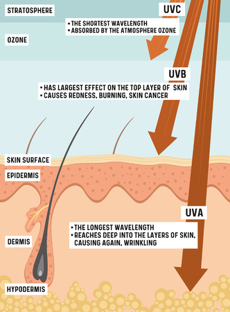 Types of UV radiation and their effect on human skin. Stok Fotoğraf - 121813647