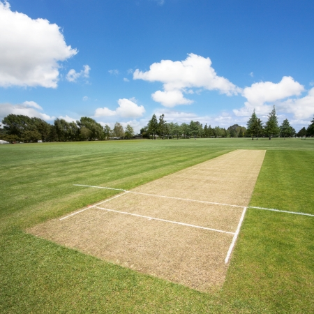 non cultivated: Cricket pitch  background with copy space Stock Photo
