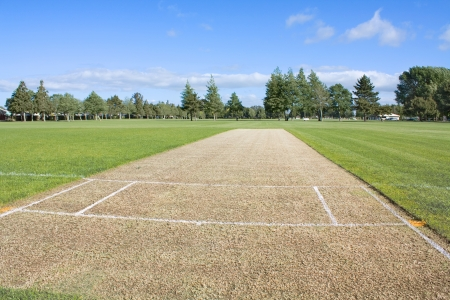 non cultivated: Empty cricket pitch