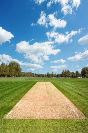 Cricket pitch background