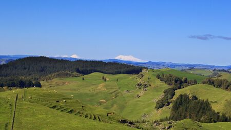 Picturesque green hills and volcanoes landscape panorama, West Coast, North Island, New Zealand