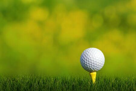 Golf ball on tee, green grass background