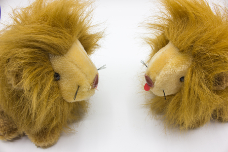 facing each other: fluffy dolls lions facing each other on a white background. Stock Photo