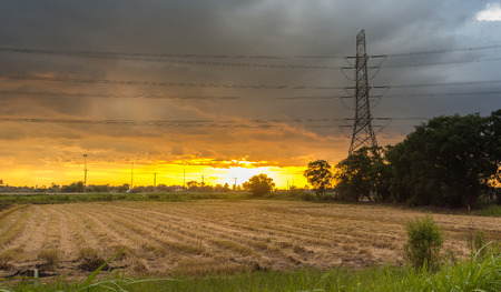 High voltage pole is installed in the middle of rice fields on sunset and rain clouds background.