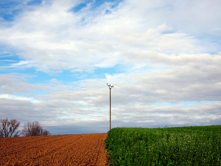 telephone pole: Wooden Telephone Pole in Rural Landscape