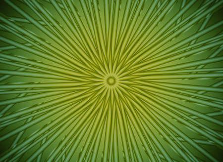 green arrows photo