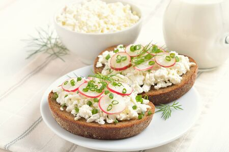 Appetizer with curd cheese, radish and green onion on white plate. Fresh cottage cheese and milk on the table.