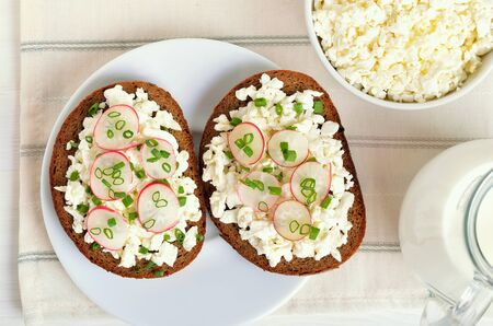 Bread with curd cheese, radish and green onion on white plate, top view