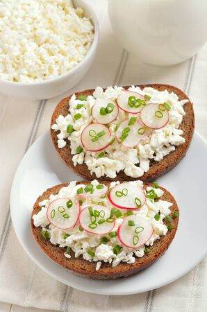 Appetizer with curd cheese, radish and green onion on white plate. Fresh cottage cheese and milk on the table