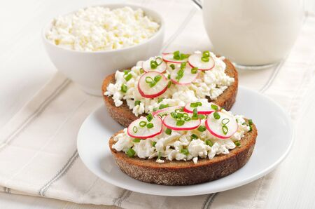 Appetizer with curd cheese, radish and green onion on white plate. Healthy breakfast