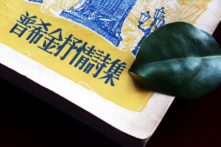 Close-up of the cover of a Chinese book