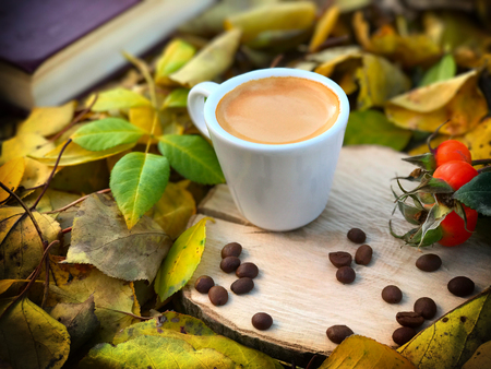 white cup of coffee on a stump in the autumn forest among a yellow fallen leaves Stock Photo