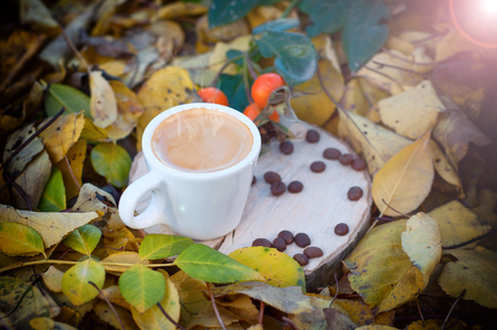 Cup of coffee among the yellow fallen leaves in the sunlight, selective focus vintage toning