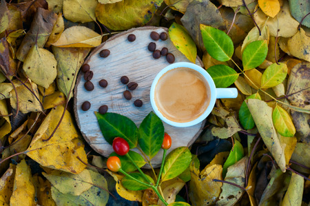 cup of coffee among the fallen yellow leaves, top view, selective focus Stock Photo