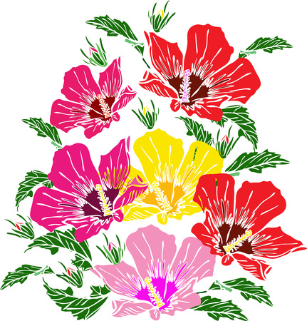 blooming pink, red and yellow mallow, green leaves, bouquet isolated on white background