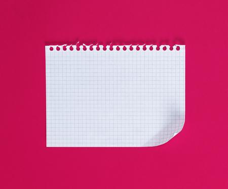 empty rectangular white sheet torn out of notepad on a pink background Reklamní fotografie