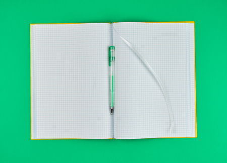 open notebook in line and gel pen on a green background, top view, empty white sheets
