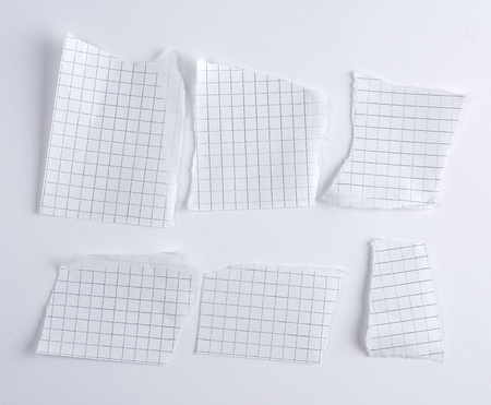 Empty torn pieces of paper from notebook to cell on a white background, close up