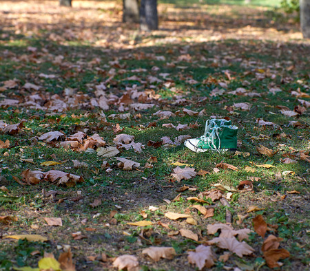 green old textile sneakers stand  in the middle of an autumn forest, day