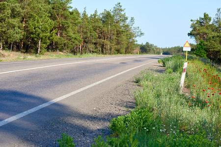 Carretera asfaltada a lo largo del bosque, día de verano, Ucrania