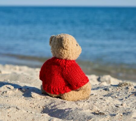 brown teddy bear in a red sweater stands on the sandy seashore and looks into the distance,  concept of loneliness