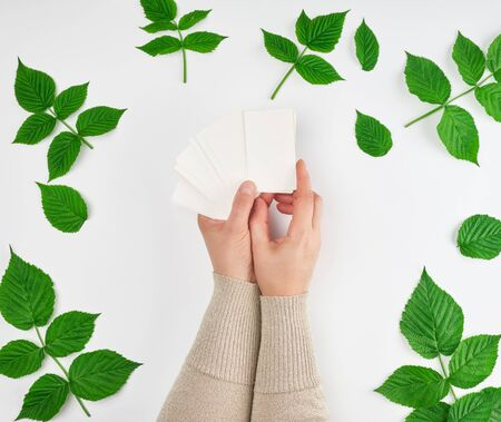 female hand holding a stack of white empty paper business cards and fresh green leaves of raspberry on a white background, top view