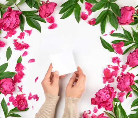 female hands and burgundy blooming peonies on a white background, fashionable concept for hand skin care, anti-aging care, spa treatments, hands holding empty paper