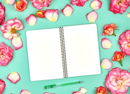 notebook with white blank pages on a green background and petals of a pink roses , top view, flat lay
