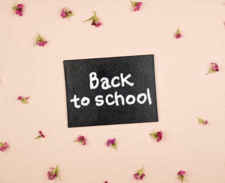 black chalk frame with the inscription back to school, pastel tone with flower buds Imagens