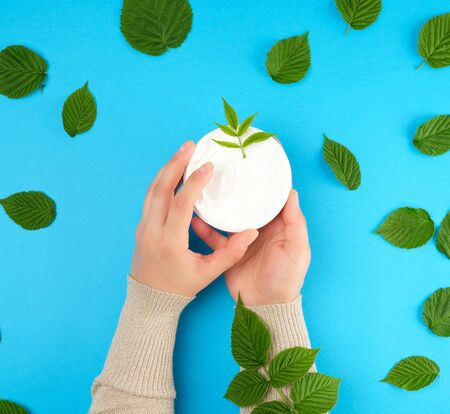 two female hands of a young girl with smooth skin and round jar with thick white cream, blue background with green leaves of raspberry, concept of spa treatments for the skin